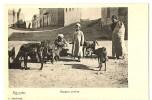 CPA Afrique Egypte Bergers Arabes Animé - Egypte