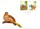 1981 PAKISTAN TRAGOPAN BIRD FDC WILDLIFE FAUNNA. - Autres