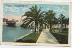 USA, Etats Unis, Tampa, Promenade Along Hillsboro River, Plant Park, CP Ayant Circulé En 1923 - Tampa