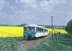TRAIN - AK 84697 Triebwagen 972 771/772 171 Bei Urnshausen - Trains