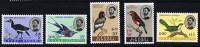ETHIOPIE 1962  Oiseaux Série Complète Charnière *   Birds. Vogel. - Ethiopie