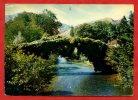 * SAINT ETIENNE DE BAÏGORRY-Vieux Pont Enjambant La Nive-1968 - Saint Etienne De Baigorry