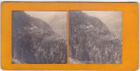 Photo Stereoscopique Suisse Tete Noire N° ?  Sip - Photos Stéréoscopiques