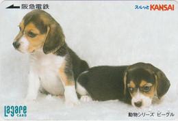Carte Prépayée Japon - CHIEN BEAGLE 2 Chiens - DOG Dogs Japan Prepaid Card - HUND Lagare Karte - 974 - Perros