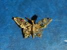 Broche Fibule Papillon Articulé - Spille