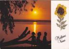 Ile De La Réunion,ile Française,outre Mer,archipel Des Mascareignes,océan Indien,ile,carte De Voeux,avec Vraie Fleur - Saint Pierre