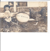 Photo Boy With Wheelbarrow Huge Egg Chicken Browning Littleton Colorado Postmark - Easter