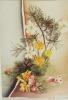 Spring Flowers - Non Classés