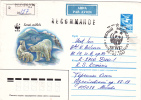 BEAR, OURS, 1987, COVER STATIONERY, ENTIER POSTAL, OBLITERATION CONCORDANTE, RUSSIA - Ours