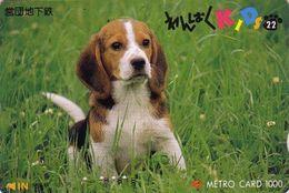 Carte Prépayée Japon - Série Kids 1 - 22/22 -ANIMAL - CHIEN BEAGLE - DOG Japan Subway Card - HUND Metro Karte - 983 - Chiens