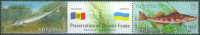 Ukraina 2007,  Fish, Michel 894-95, MNH 17240 - Vissen