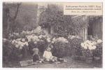 Etablissement Horticole Gobet, Cluny - Chrysanthèmes à Grandes Fleurs - Mâcon 1921, Médaille De Vermeil - 1922 - Cluny