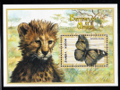 Zambia MNH Scott #869 Souvenir Sheet 5000k Euphaedra Spatiosa - Butterflies Of Africa - Zambie (1965-...)