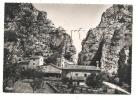 Sigottier (05) : Vue Générale En 1950  PHOTO VERITABLE. - Saint Etienne En Devoluy