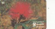 BRAZIL(Telebras) - Flowers, 4/95, Used - Brazil