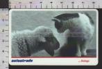 S2515 Tessera ViaCard PECORA E GATTO SHEEP CAT DIALOGO Lire 100000 - Transporto