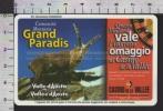 S2516 Tessera ViaCard MONTANA GRAND PARADIS CASINO DE LA VALLE SAINT VINCENT STAMBECCO Lire 100000 - Transporto