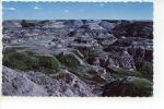 Horse Shoe Canyon Badlands Near Drumheller - Alberta