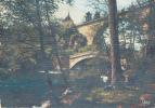 Dép. 89 - AVALLON - CPM Ponts Sur La Cure à Pierre Perthuis. Ed. C.D. N°2. Voyagée 1960 - Avallon