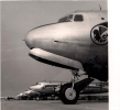 Air France, Flotte Des D.C.4 à Orly - Aviation Commerciale