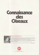 LIVRET VIDE IMAGES CHOCOLAT POULAIN / CONNAISSANCE DES OISEAUX - Vieux Papiers