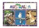 Cp, Animaux, Three Famous Australian Animals, Multi-Vues, Voyagée - Animals