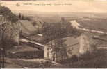 Florenville 61: Panorama De La Semois. Vue Prise De Florenville - Florenville