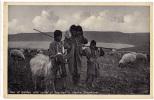 AK JORDANIEN SEA OF GALILEE WITH OUTLET OF JOURDAN NATIVE SHEPHERDS ,EINGEBORENE HIRTEN ,FOTOGRAFIE OLD POSTCARD - Jordanie