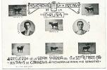 La Coruna Gran Corrida Sep. 17 1905 Toreo Fuentes Y Minuto  6 Toros - La Coruña