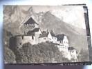 Liechtenstein Vaduz Panorama Schloss - Liechtenstein