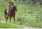 CPSM CHEVAL CHEVAUX Couple Cavalier Romantique Pas Mention CP Si Bandes Jaunes Dues Au Scan - Pferde