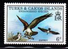 Turks & Caicos MNH Scott #380 6c Osprey - Endangered Species - Turks & Caicos (I. Turques Et Caïques)