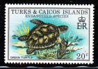 Turks & Caicos MNH Scott #381 20c Green Turtle - Endangered Species - Turks & Caicos