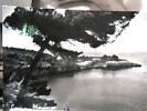 MARALUNGA LERICI  VB1961  DT15306 - La Spezia