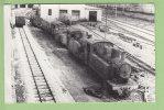 GIOIA TAURO FCL : 130T N°188. Ferrovie Calabro Lucane. 2 Scans. Coll Pérève. Photo Dahlstrom - Treni