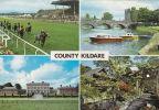 COUNTY  KILDARE MULTI VIEW - Kildare