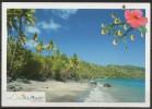 Mayote - Carte Postale - Plage De Bambo - Mayotte
