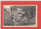 31 BARBAZAN LES THERMES  Cpa Vue Plongeante Sur Le Village Et La Vallée  205  édition L.F. - Barbazan