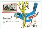 Br - 72 - SAINT CEROTTE - Coucou - Belle Fantaisie - France