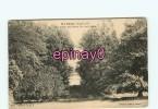 B - 85 - MAREUIL Sur LAY - Un Coin Du Parc De Salidieu - édit. Guitton - - Mareuil Sur Lay Dissais