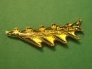 (pin512d)  Pin´s De Collection THEME : AVIONS / A-4 SKYHAWK  US NAVY BLUE ANGELS   Fabriqué Par Ou Pour ?????   Très Bon - Avions