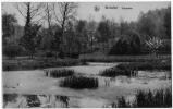 BOITSFORT Tenreuken  1935 état Superbe - Watermael-Boitsfort - Watermaal-Bosvoorde