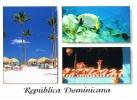 REPUBLICA DOMINICANA-  Fotos :François De Zorzi- Edit ZETA- écrite- PAYPAL FREE - Postcards