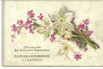 CHROMO IMAGE CASIEZ BOURGEOIS Chicorée DERNIER TAMBOUR /  Plante Fleurs  / 59 CAMBRAI - Trade Cards