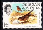 Tristan Da Cunha MNH Scott #118 Birds: 1sh6p Tristan Thrush - Tristan Da Cunha