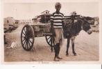 DJIBOUTI 22 PORTEUR DE SABLE (ATTELAGE ANE BEAU PLAN) - Dschibuti
