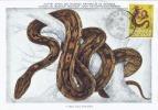 D07253 CARTE MAXIMUM CARD 1965 TOGOLAISE - SNAKE PYTHON CP MUSEUM ORIGINAL - Snakes
