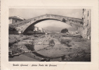 ZINOLA  -SAVONA-ANTICO PONTE DEI SARACENI  VIAGGIATA 1950  BELLA FOTO D´EPOCA ORIGINALE AUTENTIQUE 100% - Savona
