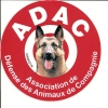 ADAC / ASSOCIATION DE DEFENSE DES ANIMAUX DE COMPAGNIE - Stickers