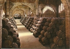 Espana Codorniu / Cava Vin Wijn Wine - Vignes